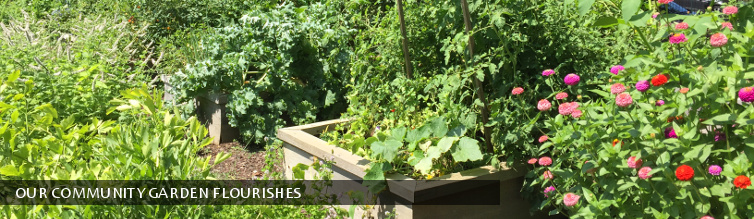 Our Community Garden Flourishes